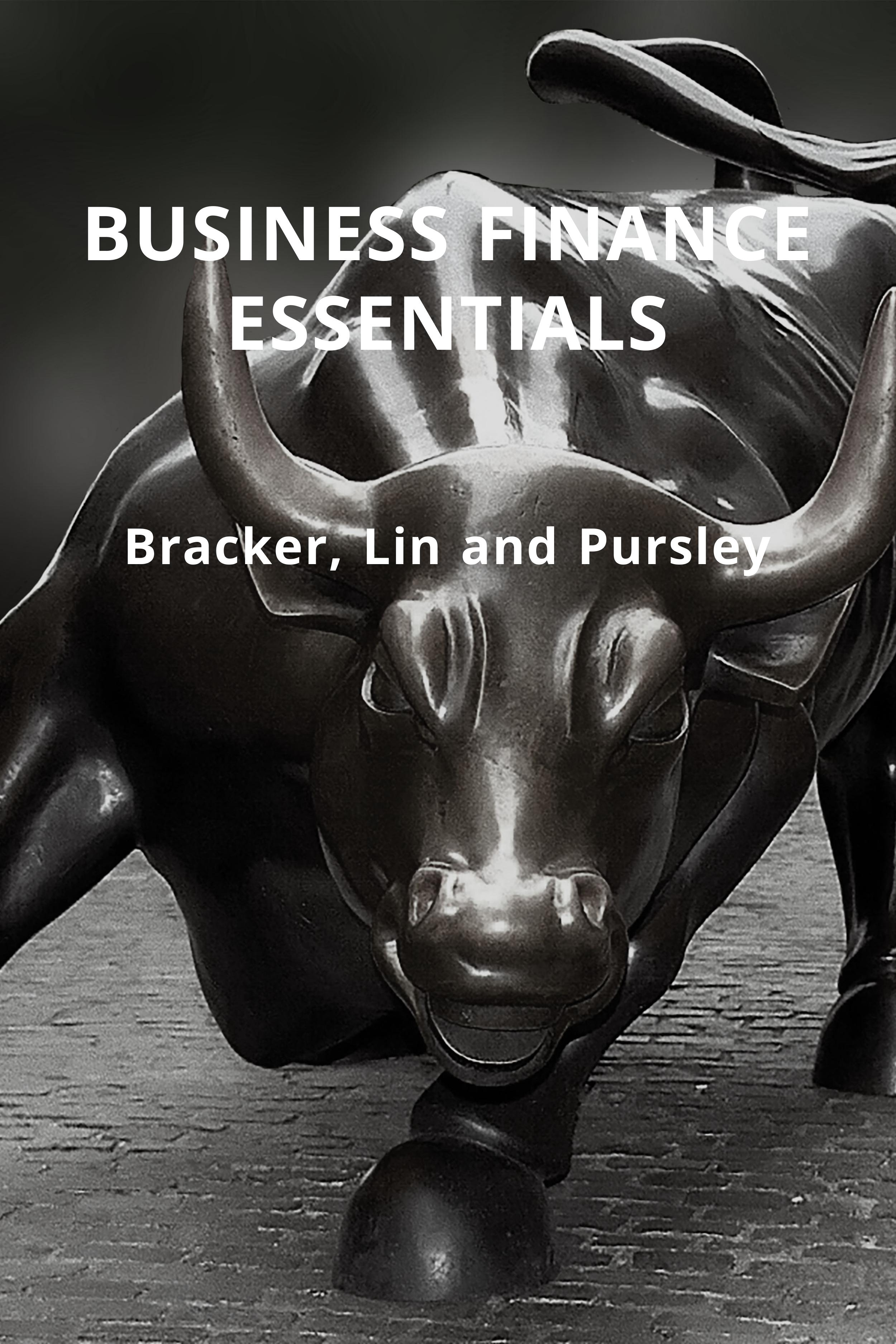 Cover image for Business Finance Essentials